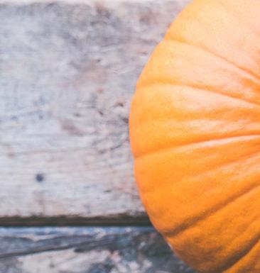 Jump in Season overhead shot of pumpkin