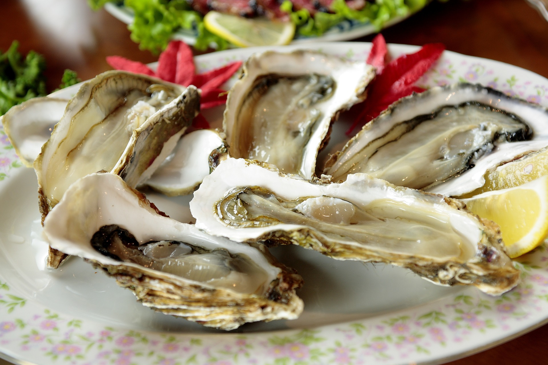 Buck a Shuck Oysters at Luma Restaurant