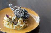 Luma Trout Gravlax on Seafood Menu in Downtown Toronto King West