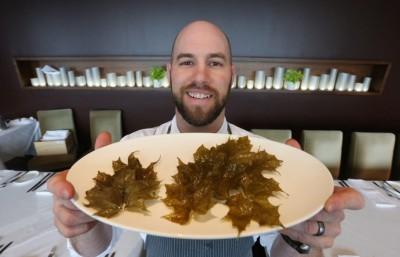 Toronto-Star-John-Horne-Fried-Maple-Leaves
