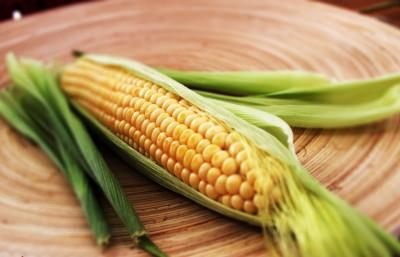 Foodism-Campfire-Corn