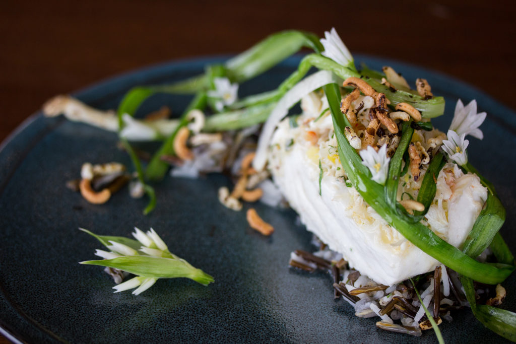 Halibut over wild rice, garnished with ramps.