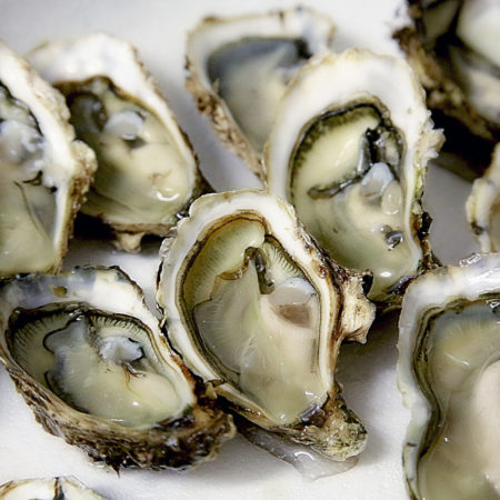 Buck-a-Shuck Oysters in Toronto