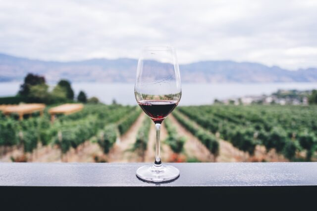 wine glass overlooking vineyard