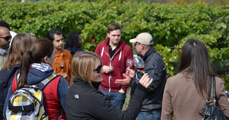 Wine Trips with Oliver & Bonacini