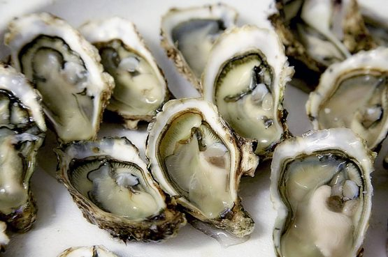 Buck-a-Shuck Oysters at Leña in Toronto
