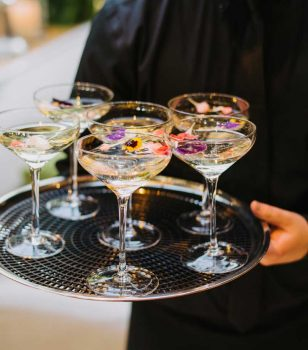 Catering Services — Cocktails