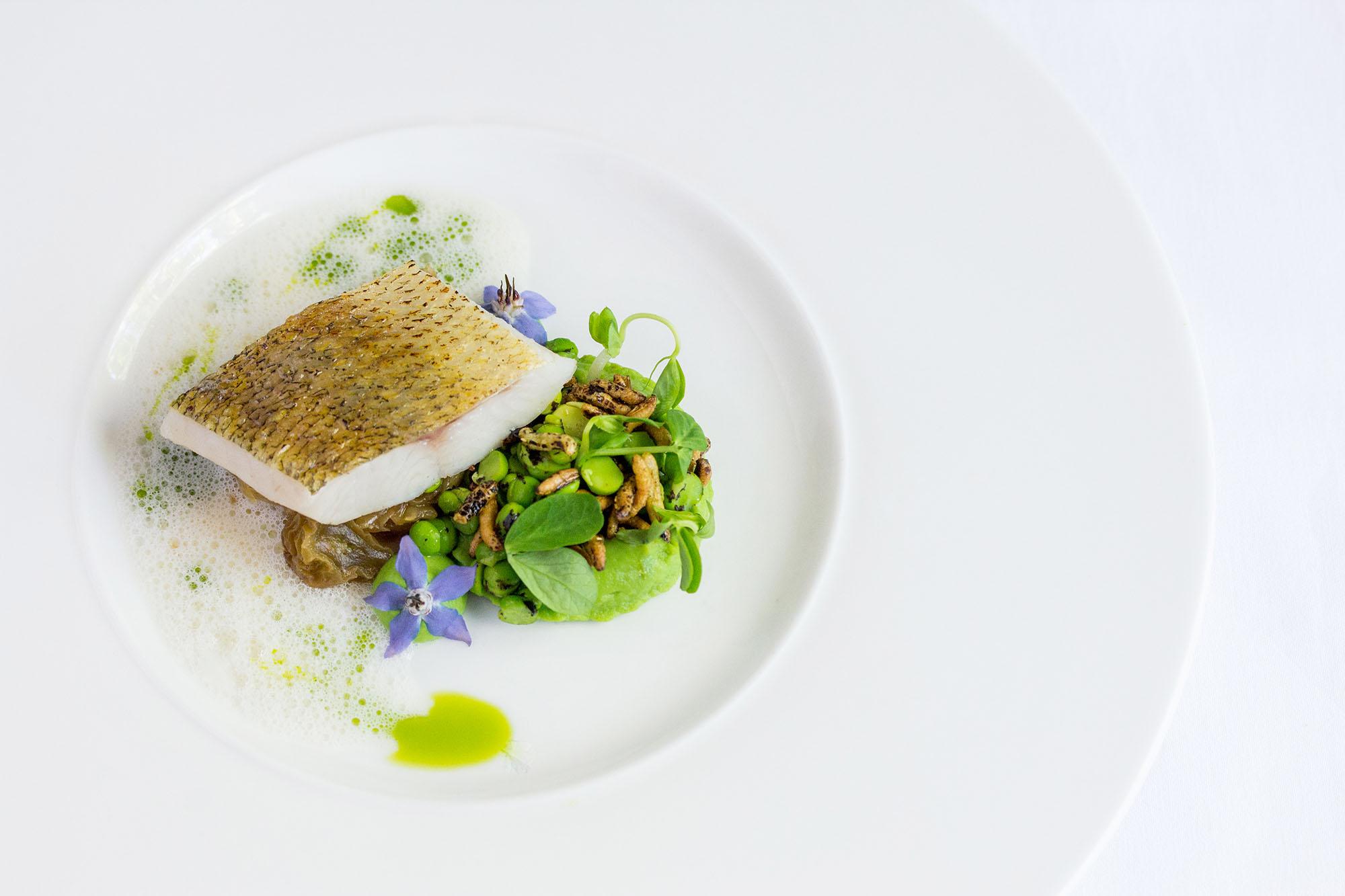 Auberge du Pommier cod dish from tasting menu