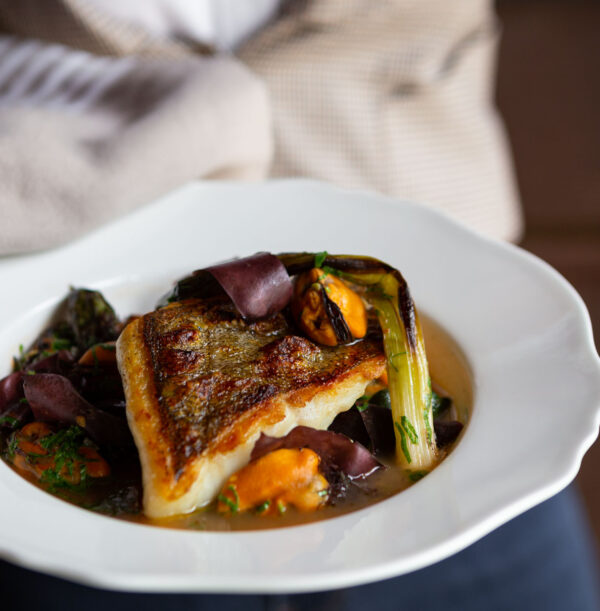 A server holding Ling Cod & Mussels over summer vegetables, roasted tomato & seaweed broth